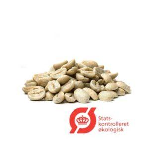 rå kaffebønner økologisk